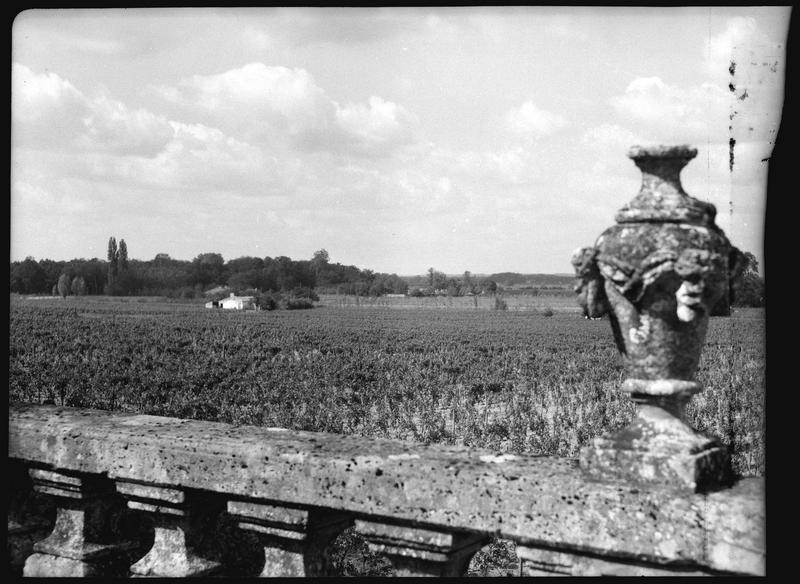 Vignes depuis la terrasse: détail de la rampe avec son vase sculpté