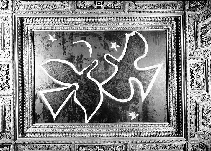 Salle Henri II, caisson central du plafond peint : Les Oiseaux