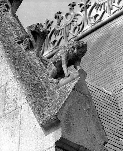 Bâtiment dit des Preuses : Détail de sculpture d'un gâble (félin)