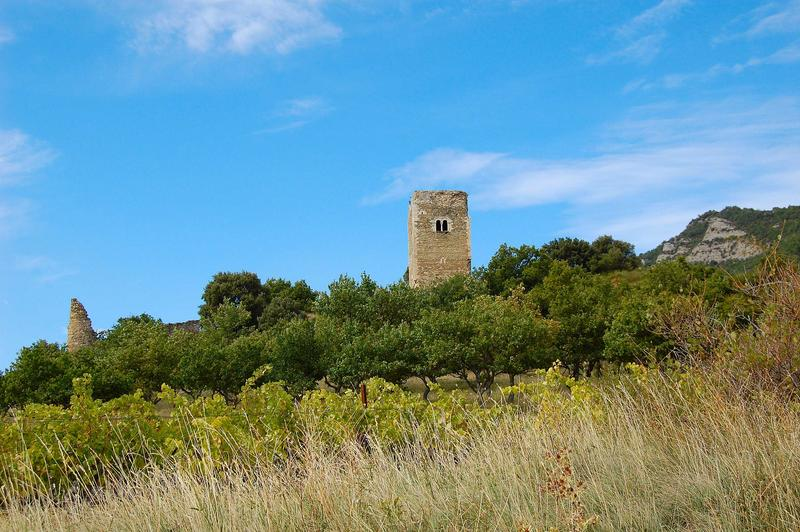 Vue de la tour dans son environnement