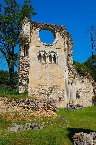 ruines de l'église abbatiale, transept nord, vue générale