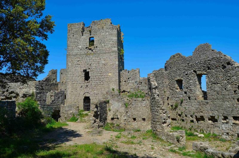 cour haute du château, façade ouest du donjon, vue générale