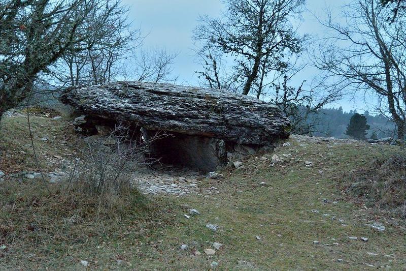 Vue générale du dolmen dans son environnement