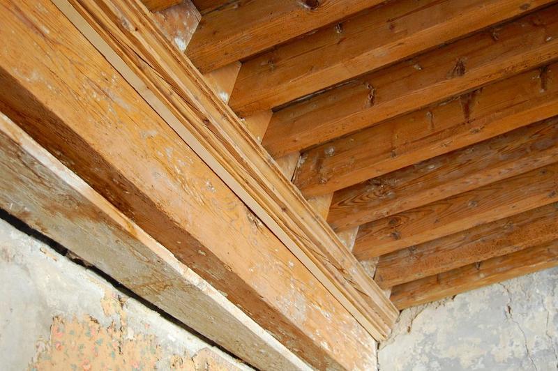 Plafond, 1er étage, détail