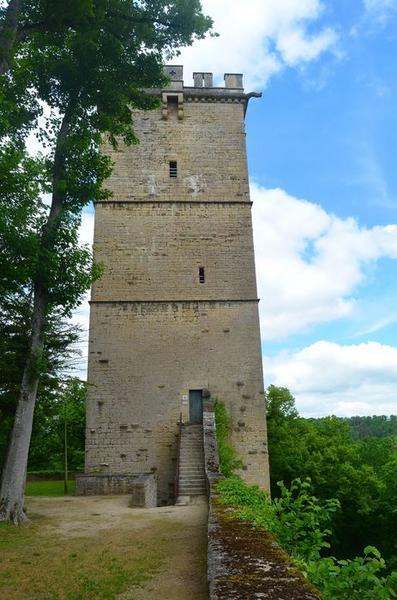 Tour du château, élévation sud, vue générale