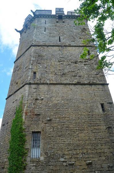 Tour du château, élévation ouest, vue générale