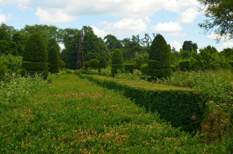 Jardins sud, vue partielle