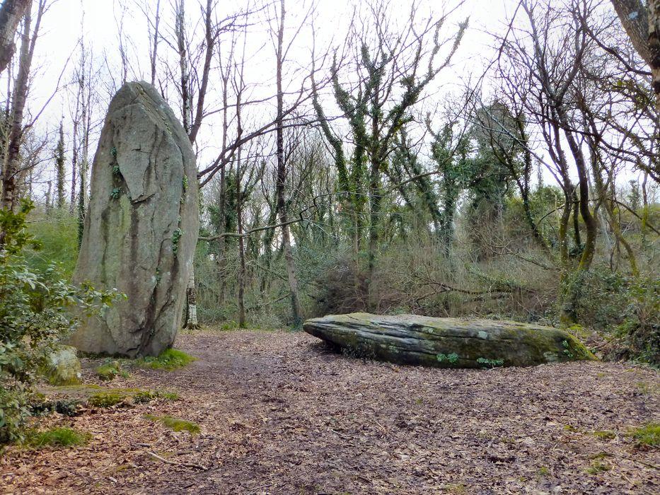 Menhirs de Lespurit-Quelen: Vue générale