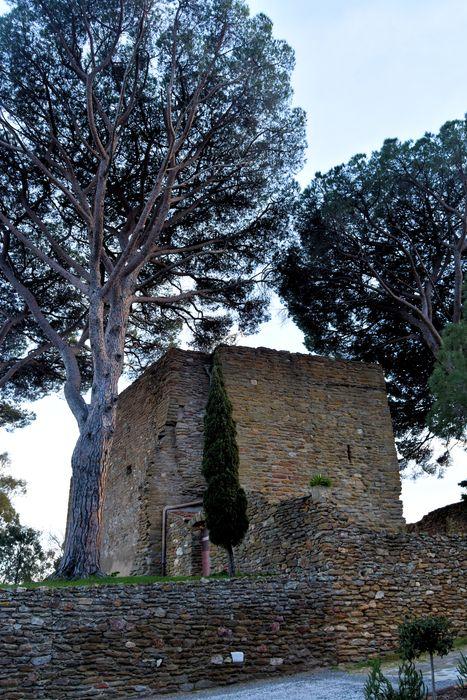 Château des Seigneurs de Foz (restes)