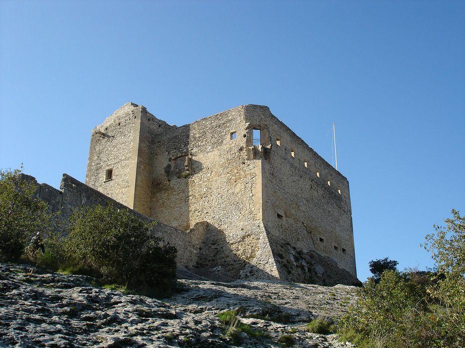 Château (ruines): Ensemble nord-est, vue générale