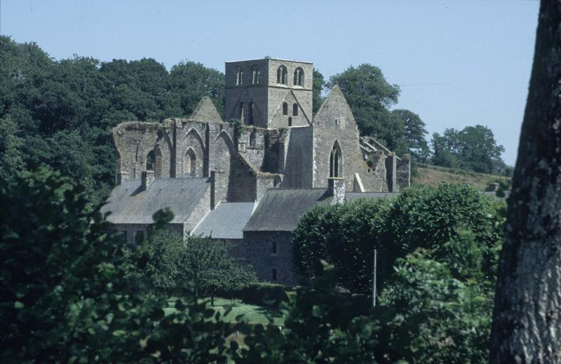 Ensemble de l'abbaye : ruines de l'église abbatiale et bâtiments conventuels