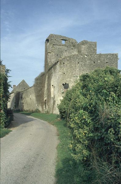 Mur d'enceinte fortifiée et donjon