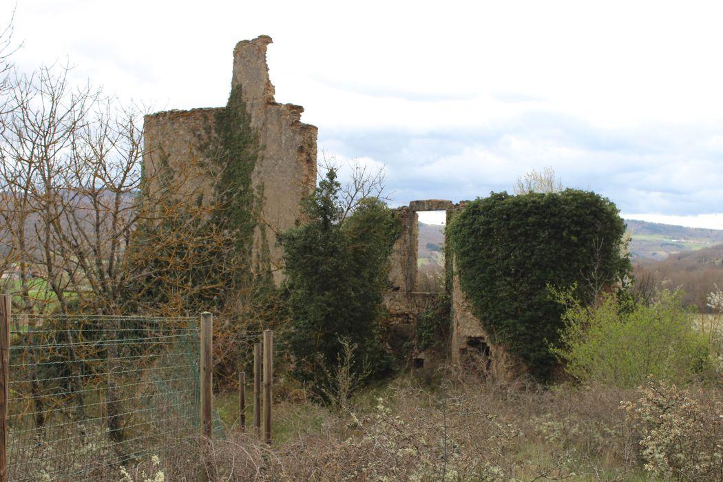 Château Cocu: Vue partielle des ruines depuis le Nord