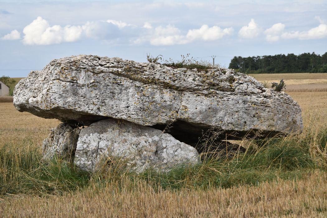 vue générale du dolmen