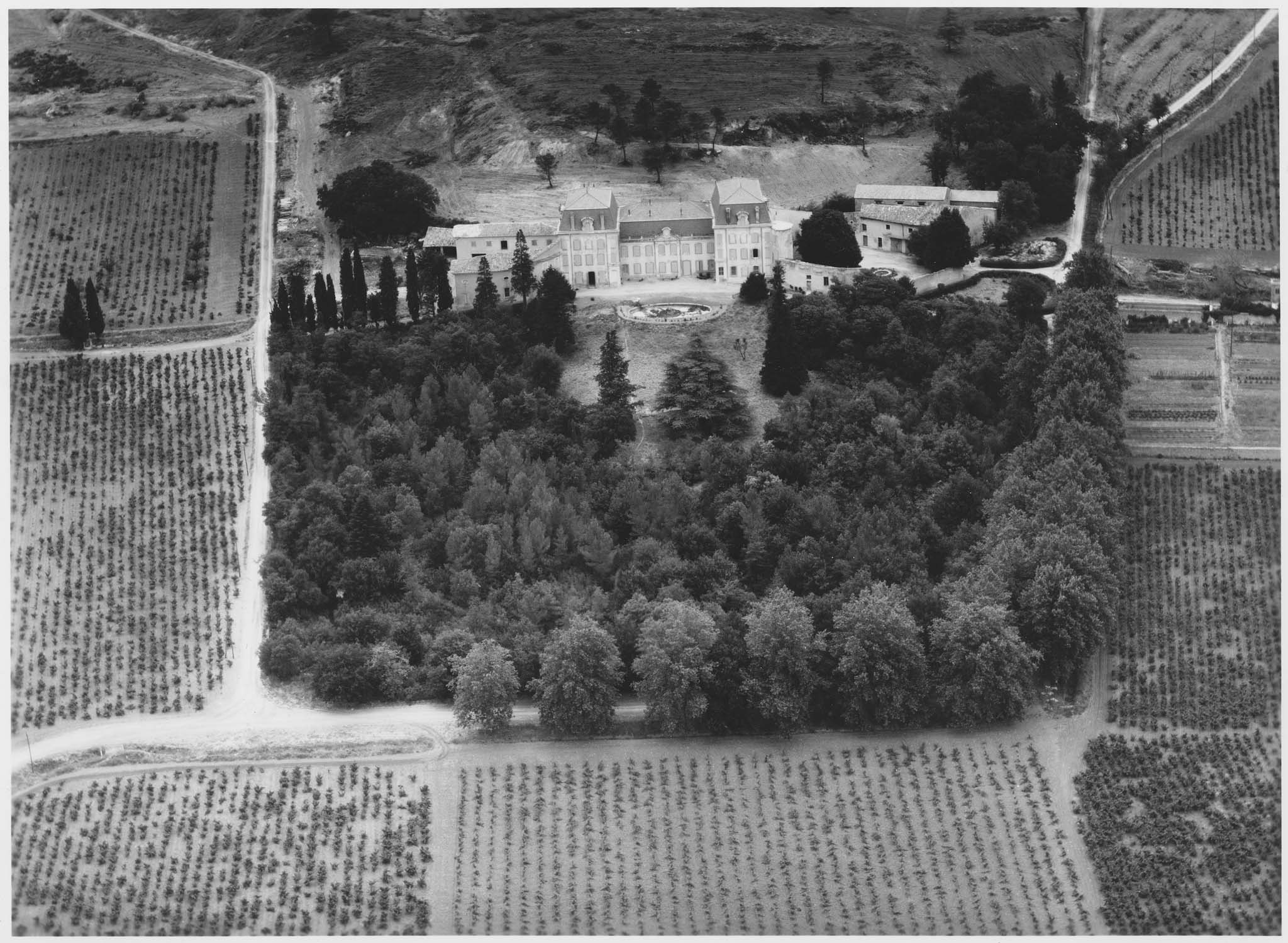 Exploitation viticole et son château