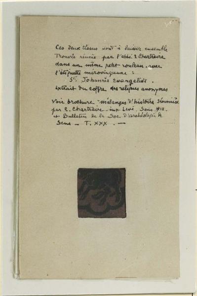 Tissu (fragment): buffle, détail
