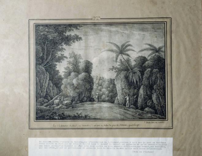 Dessin : Sur l'habitation Richard, au Matouba, à cent pas au dessus du pont de Nosières, Guadeloupe (n° inv. 31)