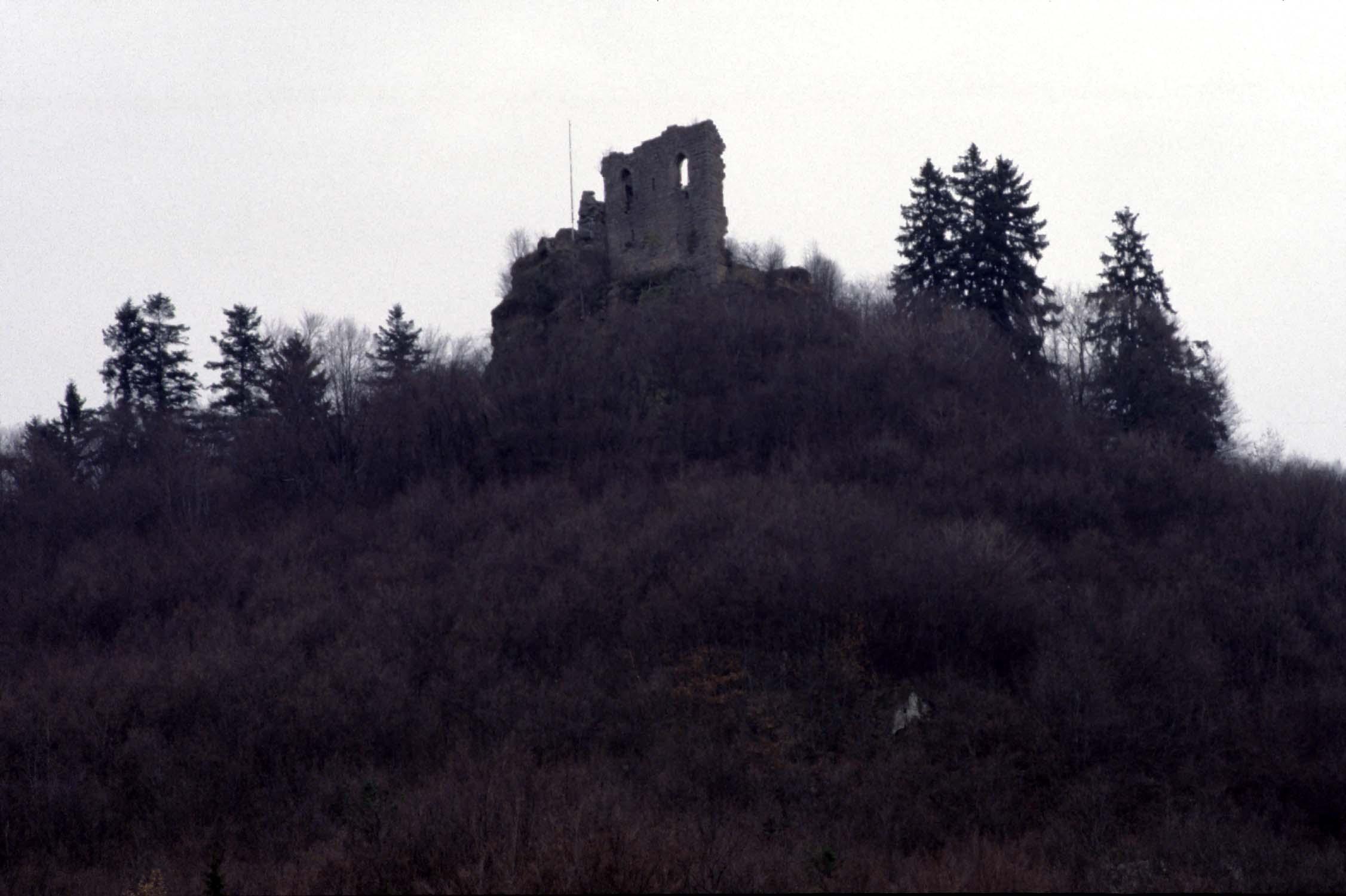 Vestiges du château émergeant dans la végétation, vue à distance