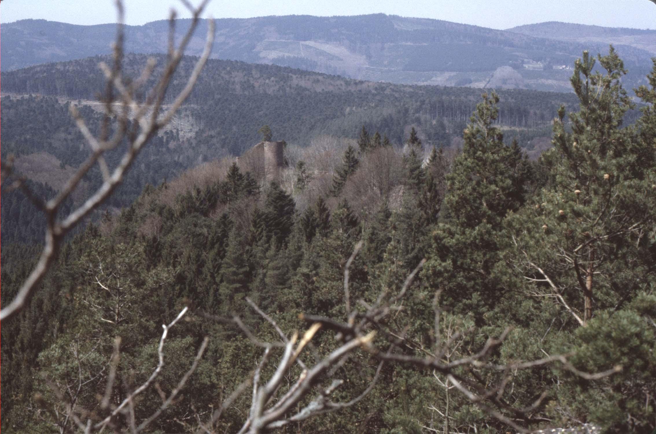 Château à travers les arbres, vu à distance depuis le mur païen