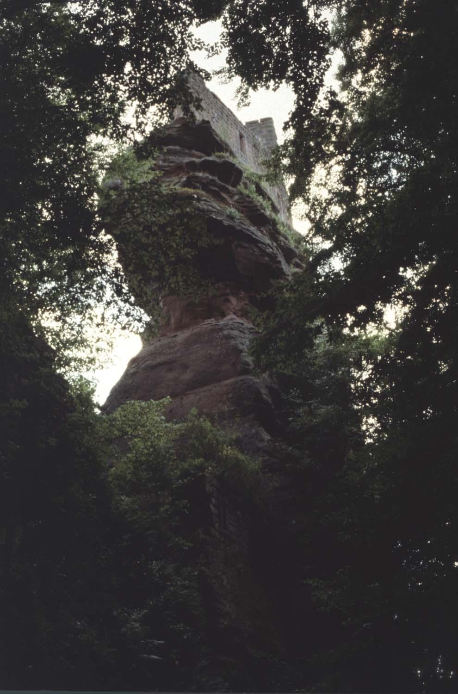 Rocher, vue générale à travers les arbres
