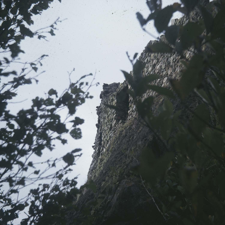 Donjon, vue partielle à travers des feuillages