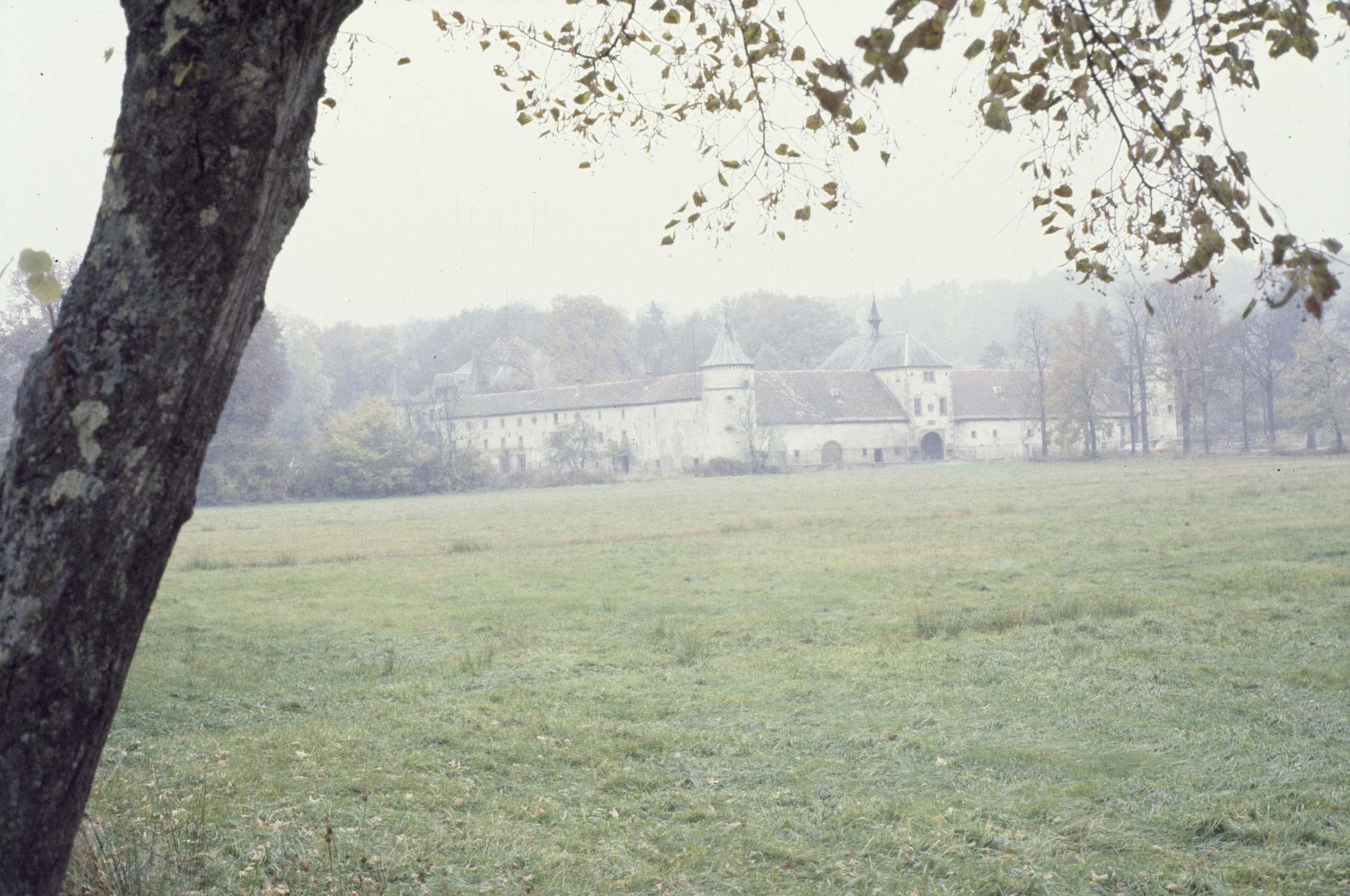 Château, vue à distance