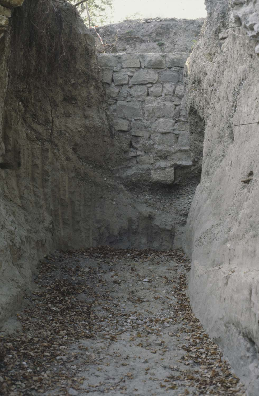 Mur roman