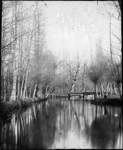 Pont de bois sur la Dives, en hiver