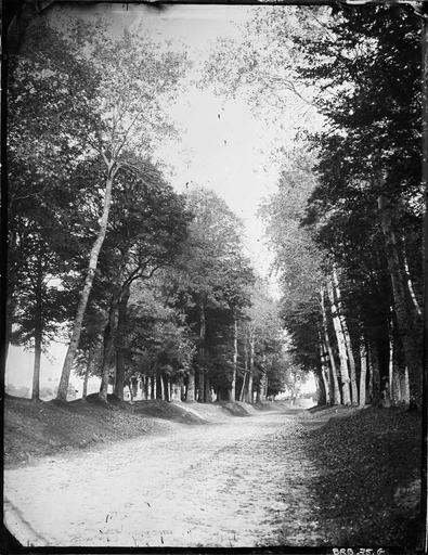 Allée forestière passant devant le château de Versainville