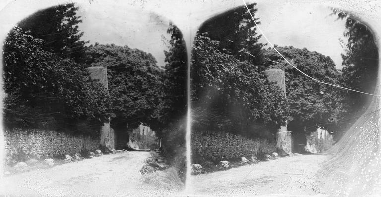 Route bordée de murs et d'arbres