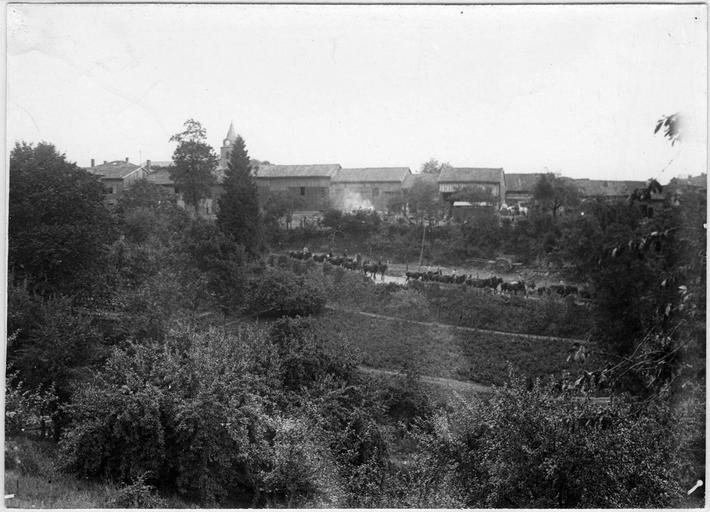 Vue générale du village et chevaux