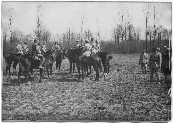 3ème régiment de troupes polonaises : la critique de la revue