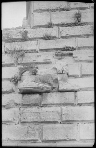 La tour des Lions: détail du lion nord