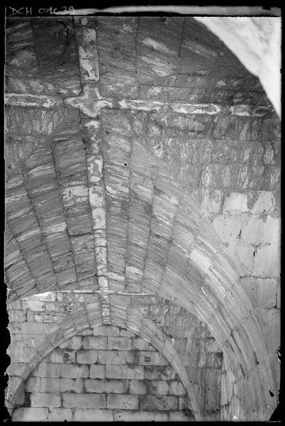 Grande salle voûtée de la tour maîtresse du front est: détail de l'appareil de la voûte