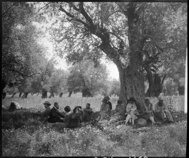Congrès archéologique de Syrie, Liban et Palestine en 1926: déjeuner à l'ombre des arbres, près de Beit Jibrin
