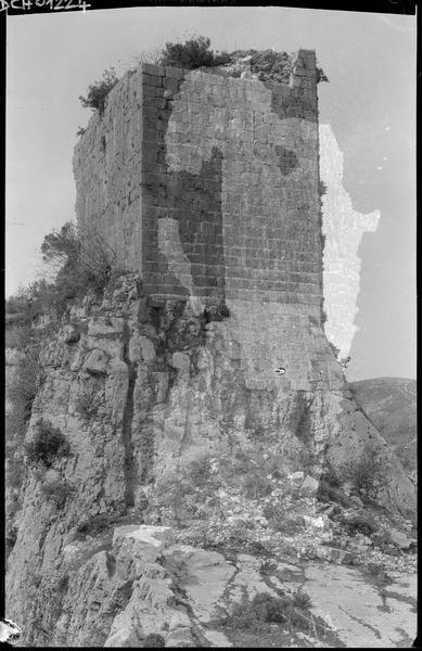 Vue générale de la tour ou mur-bouclier