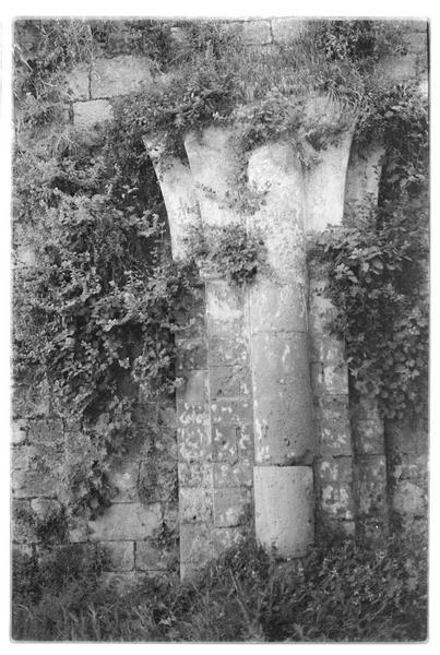 Vue de l'intérieur du château; vestiges de la chapelle