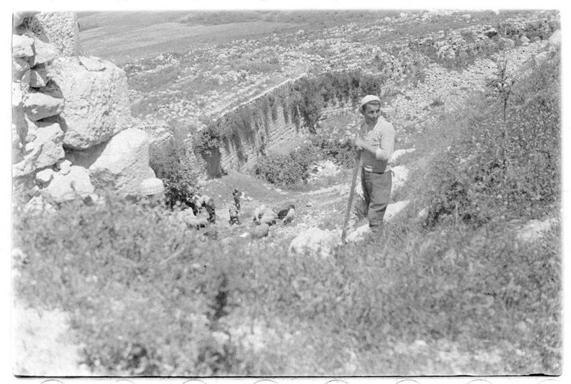 Contrescarpe du fossé ouest(supposée)
