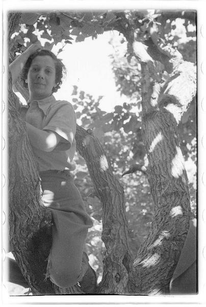Jeune femme dans un arbre