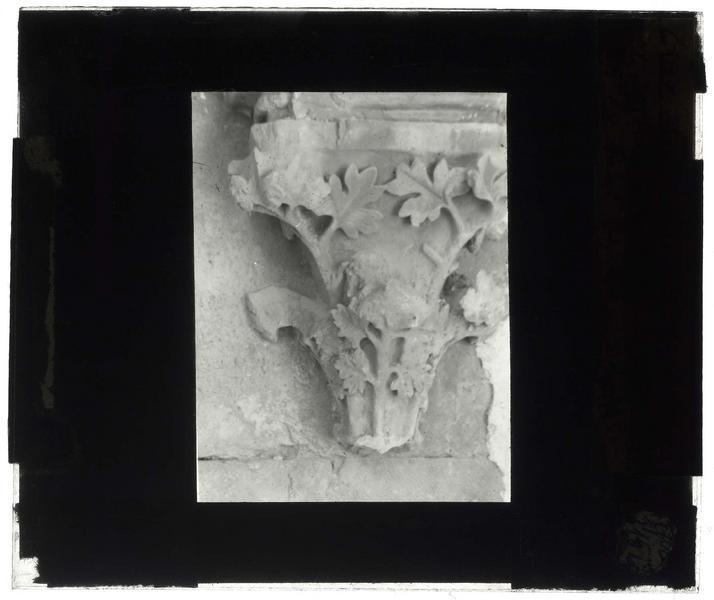 Chapiteau de la galerie gothique