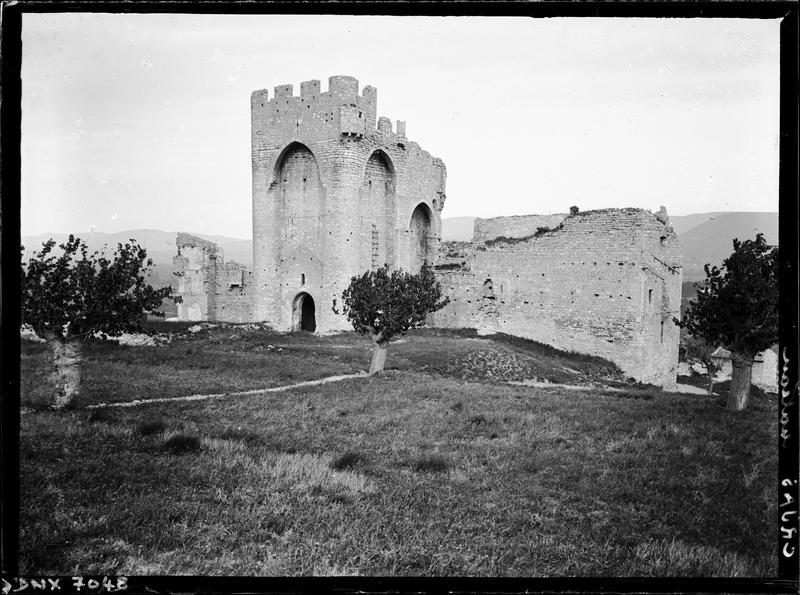 Ruines : vue d'ensemble