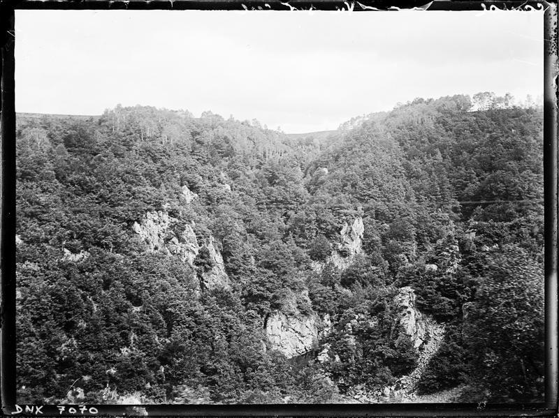 Paysage : rochers et végétation