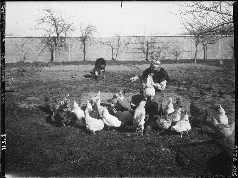 Femme assise, en sabots, nourrissant des poules