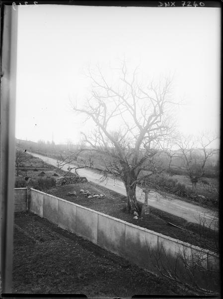 Paysage rural : mur de clôture, route, champs, croix au pied d'un arbre
