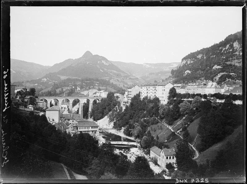 Vue à distance du pont, en arrière-plan de bâtiments et de pentes boisées