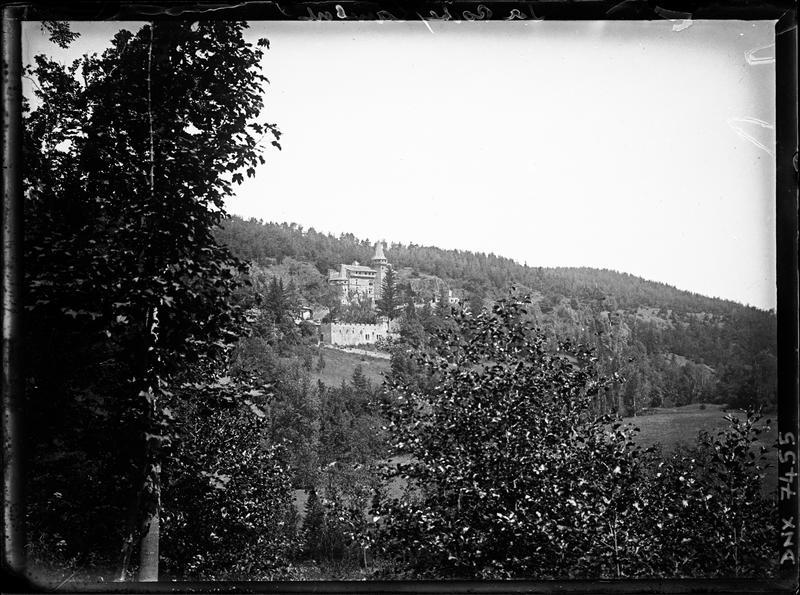 Vue d'ensemble à distance, forêt au premier plan