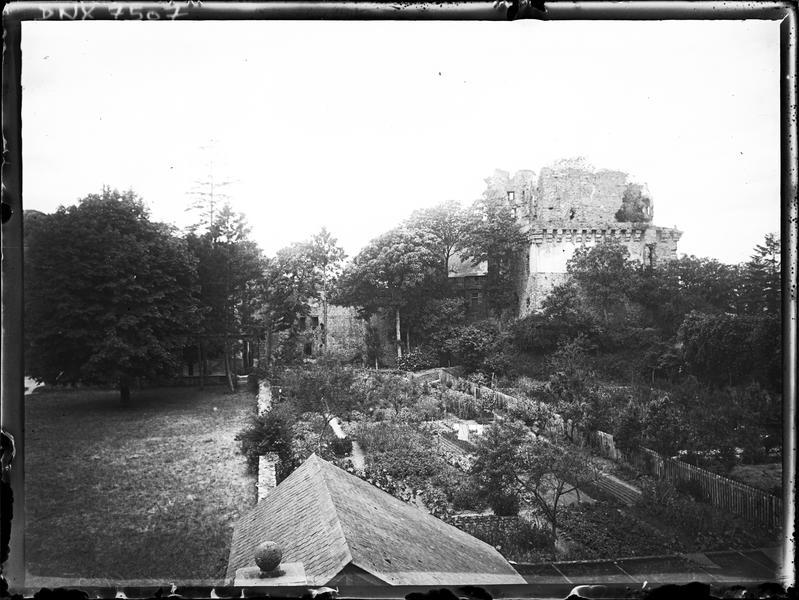 Ruines dans la végétation