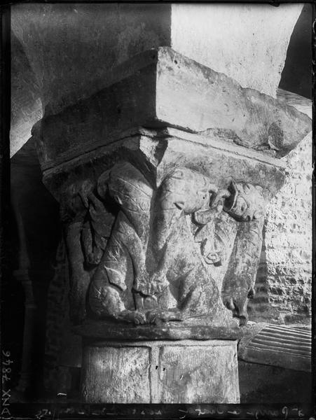 Chapiteau de la crypte : lions aux langues entrecroisées