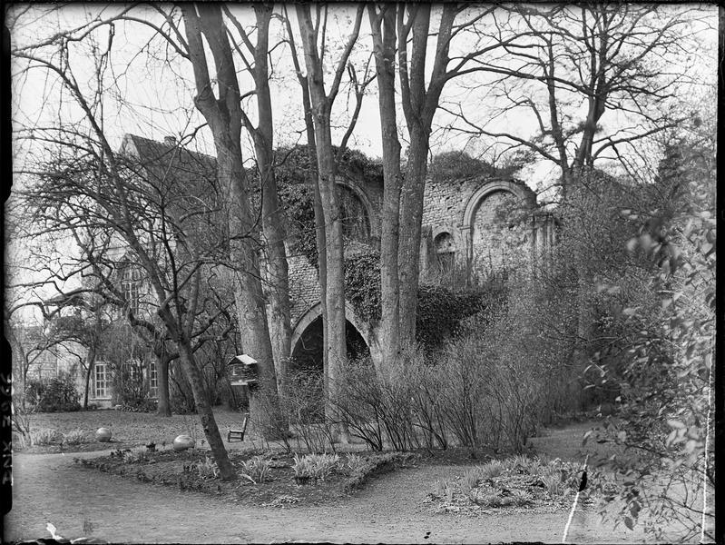 Ruines vues à travers les arbres