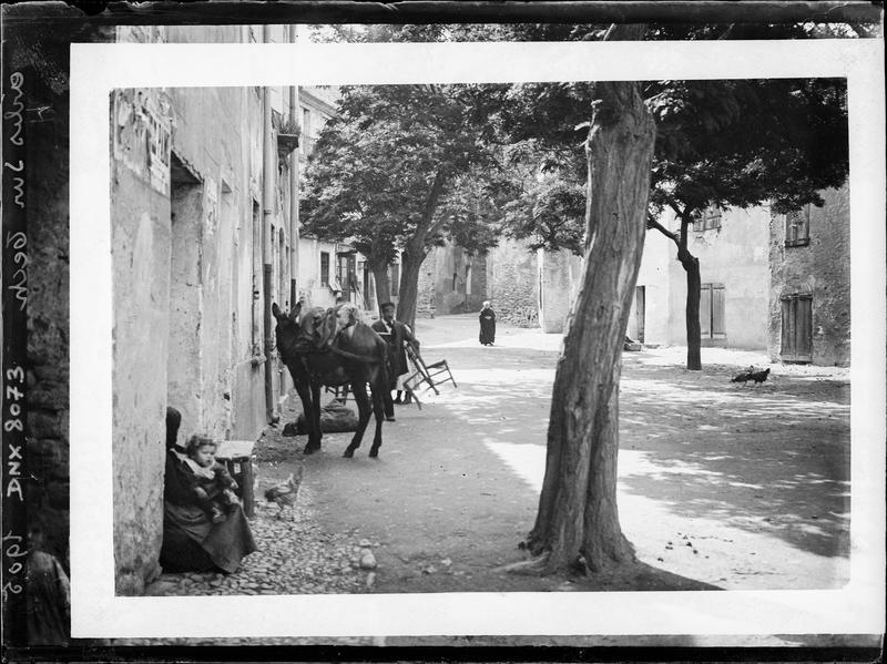 Rue du village : arbre, mule, villageois